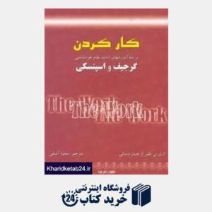کتاب کار کردن بر پایه آموزشهای اساتید نظام خودشناسی