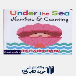 کتاب Numbers & Counting