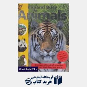 کتاب Big and Busy Animals